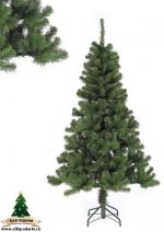 Елка Благородная 215 см зеленая, стройная