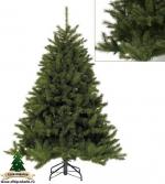 Ель Лесная красавица (Forest Frosted Pine) 185 см