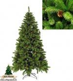 Ель Императрица с шишками (Empress spruce with cones green) 200 см
