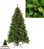 Ель Императрица с шишками (Empress spruce with cones green) 215 см