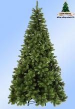 Triumph Tree Сосна Санкт-Петербург 230 см арт. o-782508/73540