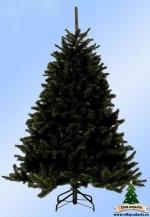 Ель ЛЕСНАЯ КРАСАВИЦА (Forest Frosted Pine) 155см чёрная