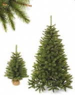 Triumph Tree Триумф Сосна Сказочная 155 см арт. o-788685/73534