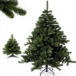 Triumph Tree Ель Норвежская 155см зеленая длинная хвоя арт. o-88804/73223