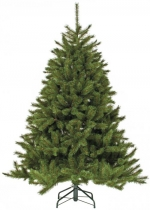 Ель Лесная красавица (Forest Pine) 3,05 м