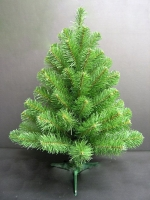 Ель Норвежская (Norway spruce) 45 см