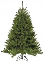 Ель Лесная красавица (Forest Pine) 3,65 м