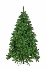 Сосна Рождественская 215 см